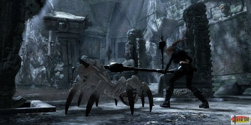 《古墓丽影8地下世界》陆地动物蜘蛛介绍